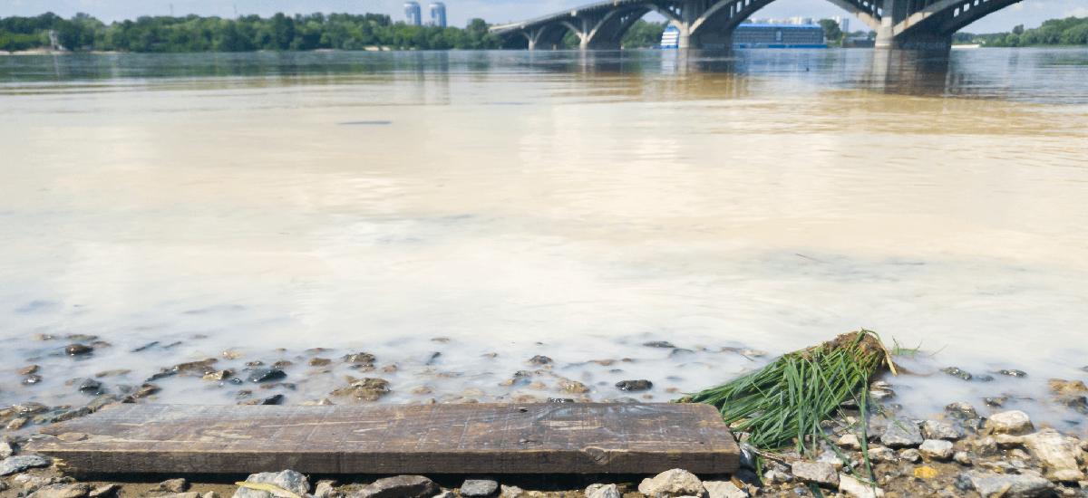 微波萃取與索式萃取比較用於分析底泥中短鍊氯化烷的化合物