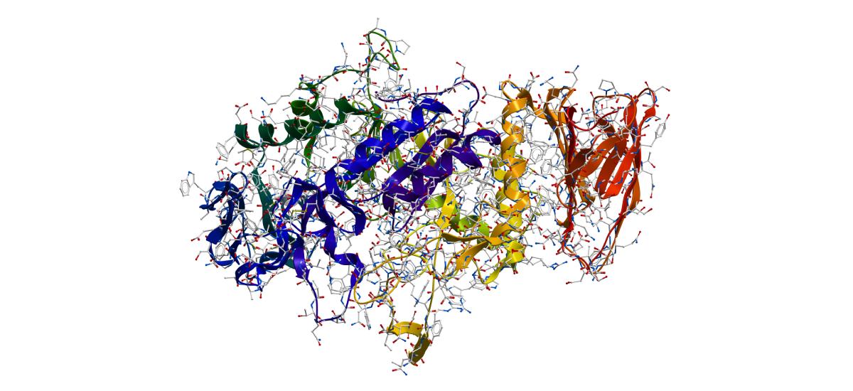 解密藥物控制釋放的新技術-胜肽水凝膠與蛋白質藥物的結合